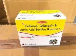 Cefixime, Ofloxacin & Lactic Acid Bacillus Bolus(Vet)