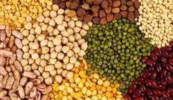 Pulses And Grains, Pan India