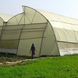 Polyhouse Sheet Or Greenhouse