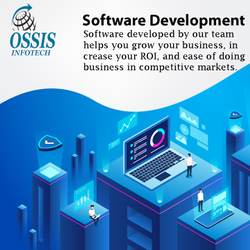 Online Software Development Service, in Pan India