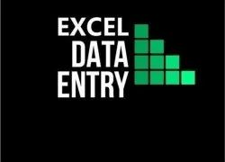30 Days E Commerce Excel Data Entry Service