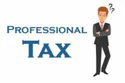 Professional Service Tax Return Services