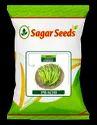 Prachi F-1 Hybrid Chili Seeds