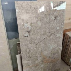 Kajaria Nano Polished Tile