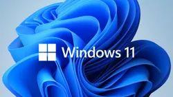 Windows Operating System (O.S) Installation