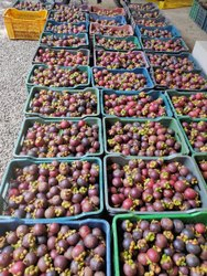 A Grade Mangoosten Fruit, Packaging Size: 10 Kg