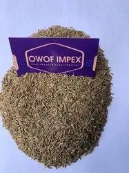 Cumin Seed Jeera, 20 kg, Packaging Type: Gunny Bag