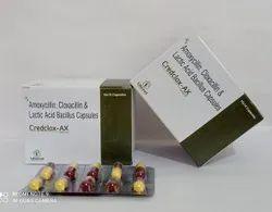 Amoxycillin Cloxacillin Lactic Acid Bacillus Capsules