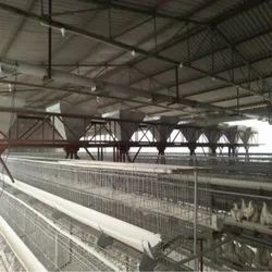 Poultry Cage