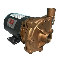 2 HP Three Phase Teel Centrifugal Pump, For Industrial, Model Name/Number: 1P793
