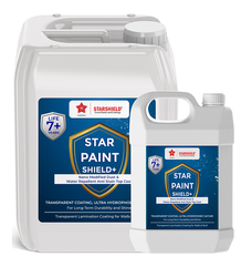 Acrylic Painting Varnish- Star Paint Shield+