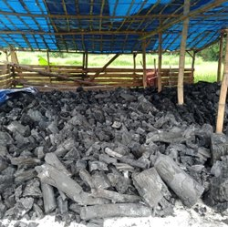Lumps Wood Charcoal, For Burning, Packaging Size: Loose in Small PP Bags