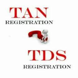 TDS Returns Filling