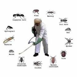 Commercial Chemical Treatment Insect Control