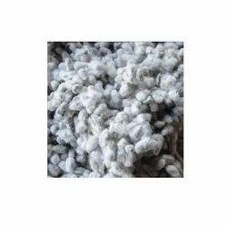 Organic Cotton Oil Seed