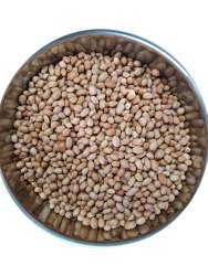 Dry Raw Peanut Kernel, Packaging Type: Loose, Packaging Size: 50 Kg