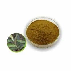 Herbo Nutra Green Kacip Fatimah Extract, Packaging Size: 25 Kg, Packaging Type: Paper Drum