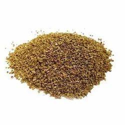 Organic Ajwain ( Carom ) Seed USDA & EU Certified, 25 kgs