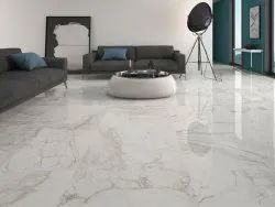 Multicolor Glossy Vitrified Floor Tiles, Thickness: 12 mm, Size: 60 * 60 in cm