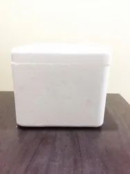 EPS Thermocol Moulded Box