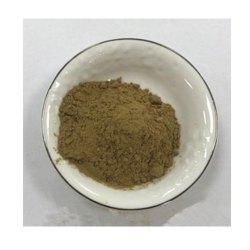 Butterbur Extract