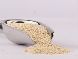 Organic White Sesame Seed