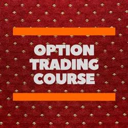 Individual Consultant Long Time Option Trading Course