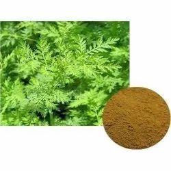 Artemisia Extract