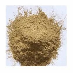 Hoodia Extract, Packaging Size: 25 Kg