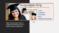 MBA Project Report Service