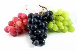 Grape Testing Services