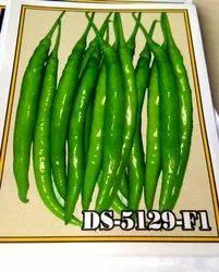 Green Hybrid Chilli Seeds, Packaging Type: 10g