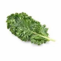 Kale Extract
