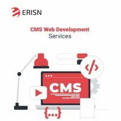 Java Script CMS Web Development Services