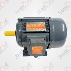 Upto 120 HP Standard Electric Motor