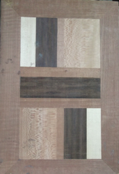 Decorative Flush Door DD 008