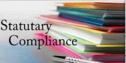 Statutory Compliance Auditing Services, Pan India