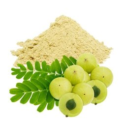 Yuktha Nuturals Amla Powder - 100 gm