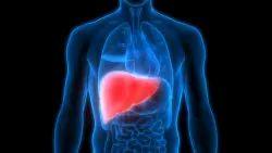 Liver Disease Diet Plan