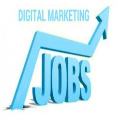 Graduate Skilled Digital Marketing Manpower Service, Pan India