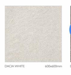 White Somany Vitrified Floor Tiles, 600 mm x 600 mm, Size: 60 * 60 in cm