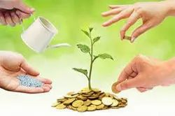 Online Venture Capital Investment Management Services, Daily