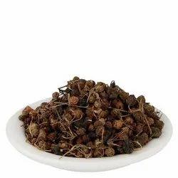 Solanum Nigrum, Makoy, Nightshade Seed