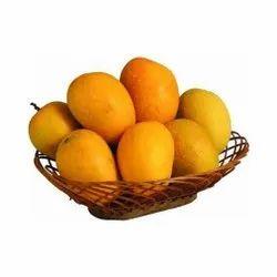 Yellow Fresh Kesar Mango Fruit, Packaging Size: 10 kg