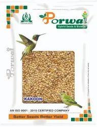 Brown Kakun Seed