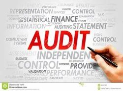 Consultancy 6 To 8 Months Internal Audit Service, Pan India