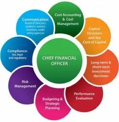 Virtual CFO Statutory Management Services