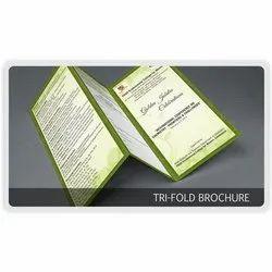 Tri Fold Brochure Printing Service, in Pan India