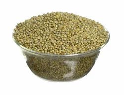 Green Millet, High in Protein