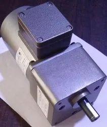 25 Watt Induction Geared Motor With Terminal Box